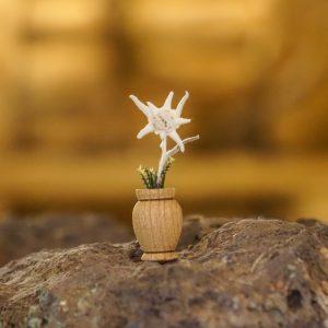 Vasinho Edelweiss Natural